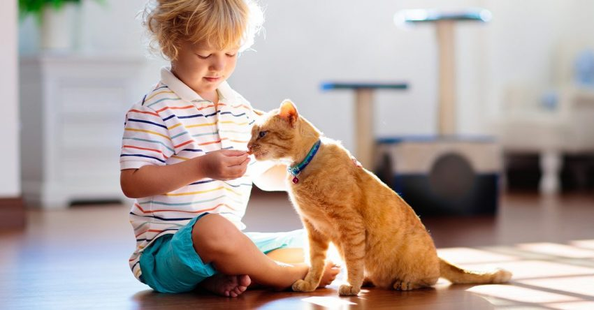 How To Make Your Kids Connect Better With Pets and Animals?